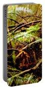 Double Rainforest Portable Battery Charger
