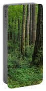 Douglas-fir Portable Battery Charger