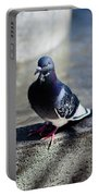 Dove Portable Battery Charger