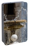 Water Of The Doves Portable Battery Charger