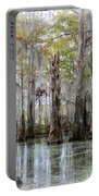 Down On The Bayou - Digital Painting Portable Battery Charger by Carol Groenen