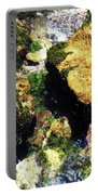 Down Stream Of Clearwater Falls Portable Battery Charger