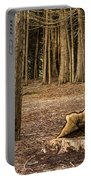 Down Tree Portable Battery Charger
