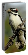 Downy Woodpecker In Fall Portable Battery Charger