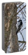 Downy Woodpecker Portable Battery Charger