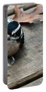 Downy Wooodpecker Picoides Pubscens Portable Battery Charger