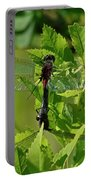 Dragonfly 1 Portable Battery Charger