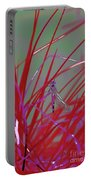 Dragonfly 5 Portable Battery Charger