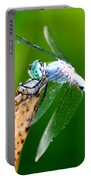 Dragonfly Blue Portable Battery Charger