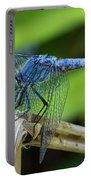 Dragonfly Color Portable Battery Charger