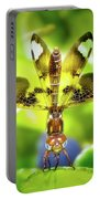 Dragonfly Design Portable Battery Charger