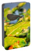 Dragonfly Dragonfly  Portable Battery Charger