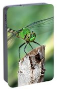 Dragonfly In The Flower Garden Portable Battery Charger