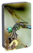 Dragonfly Landing Portable Battery Charger