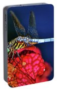 Dragonfly On A Pitcher Plant 009 Portable Battery Charger