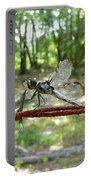 Dragonfly On Barbed Wire Portable Battery Charger