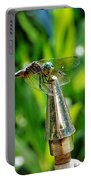 Dragonfly On Flag Post Portable Battery Charger