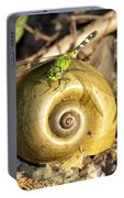 Dragonfly On Snail Portable Battery Charger