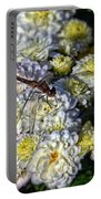 Dragonfly On White Mums Portable Battery Charger