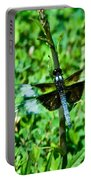 Dragonfly Resting On Stem Portable Battery Charger