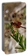 Dragonfly Resting On The Green Portable Battery Charger