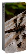 Dragonfly Spots Portable Battery Charger