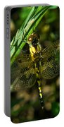 Dragonfly Venation Revealed Portable Battery Charger