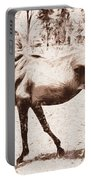 Drawn Ranch Horse Portable Battery Charger