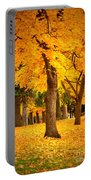 Dreamy Autumn Day Portable Battery Charger