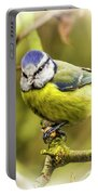 Dreamy Blue Tit Chirping Portable Battery Charger