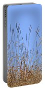 Dried Grass Blue Sky Portable Battery Charger