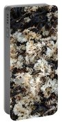 Dried Irish Moss Portable Battery Charger