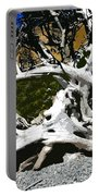 Drift Wood Portable Battery Charger