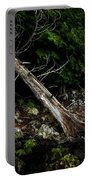 Drifted Tree Portable Battery Charger