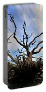 Driftwood And Roots Hunting Island Sc Portable Battery Charger by Lisa Wooten