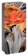 Driftwood Autumn Leaves Art Prints Baslee Troutman Portable Battery Charger