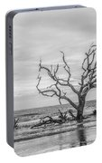 Still Standing In Black And White Portable Battery Charger