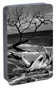 Driftwood Bw Fine Art Photography Print Portable Battery Charger