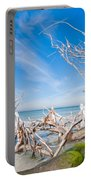 Driftwood C141348 Portable Battery Charger