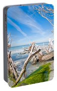Driftwood C141354 Portable Battery Charger