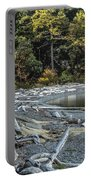 Driftwood On The Beach Sucia Island Portable Battery Charger