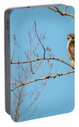Drive By Hawk Portable Battery Charger