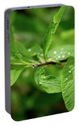 Droplets On Spring Leaves Portable Battery Charger