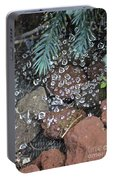 Droplets Over Web Portable Battery Charger
