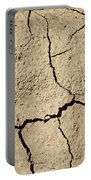 Dry Cracked Earth And Green Leaf Portable Battery Charger