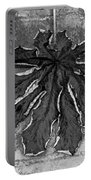 Dry Leaf Collection Bnw 1 Portable Battery Charger