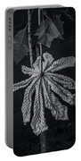 Dry Leaf Collection Bnw 2 Portable Battery Charger