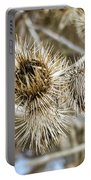 Dry Thistle Buds Portable Battery Charger