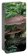Dryad's Saddle Fungus Portable Battery Charger