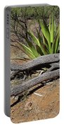 Agave And Log Portable Battery Charger